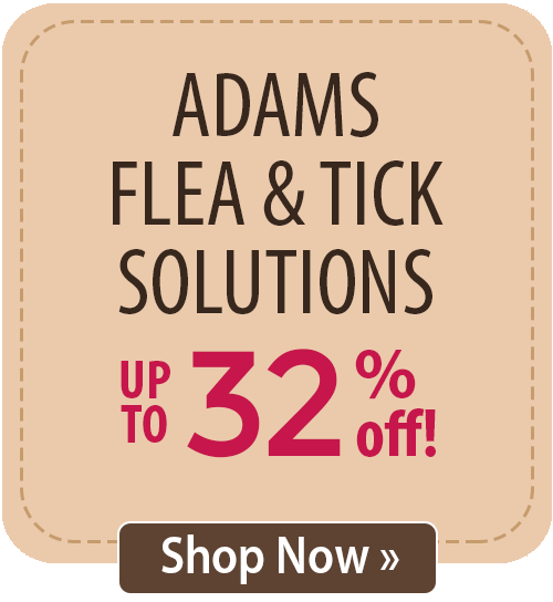 Adams Flea & Tick Solutions