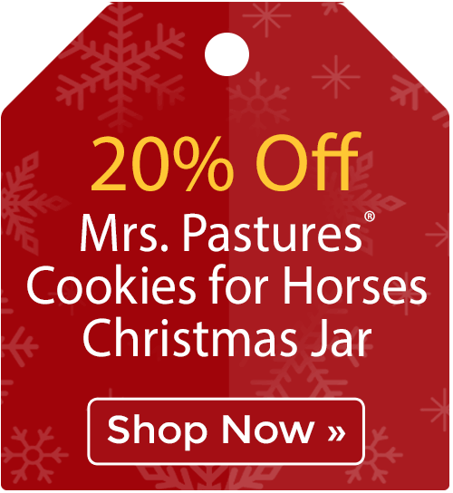 20% off Mrs. Pastures® Cookies for Horses Christmas Jar