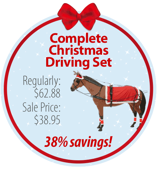Complete Christmas Driving Set