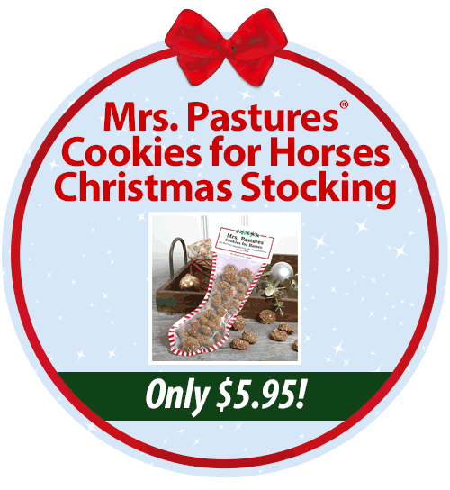 Mrs. Pastures�? Cookies for Horses Christmas Stocking