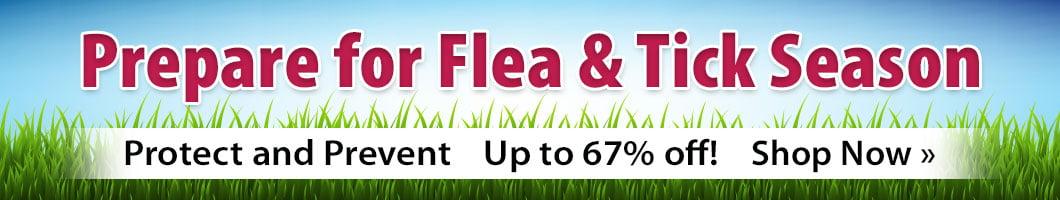 Prepare for Flea & Tick Season / Protect and Prevent