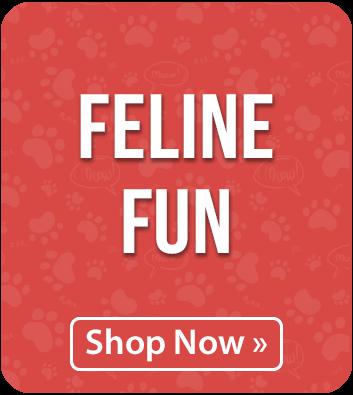Feline Fun