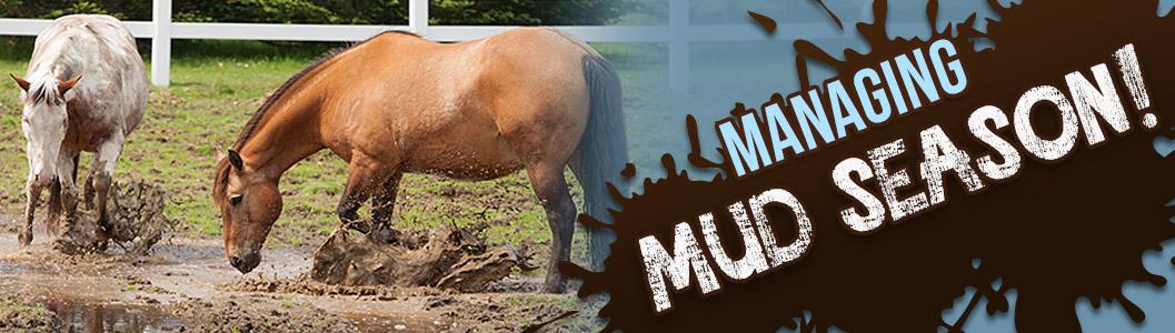 Managing Mud Season!