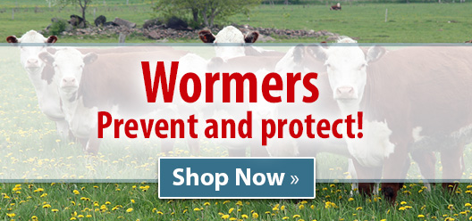 Wormers � Prevent and protect!